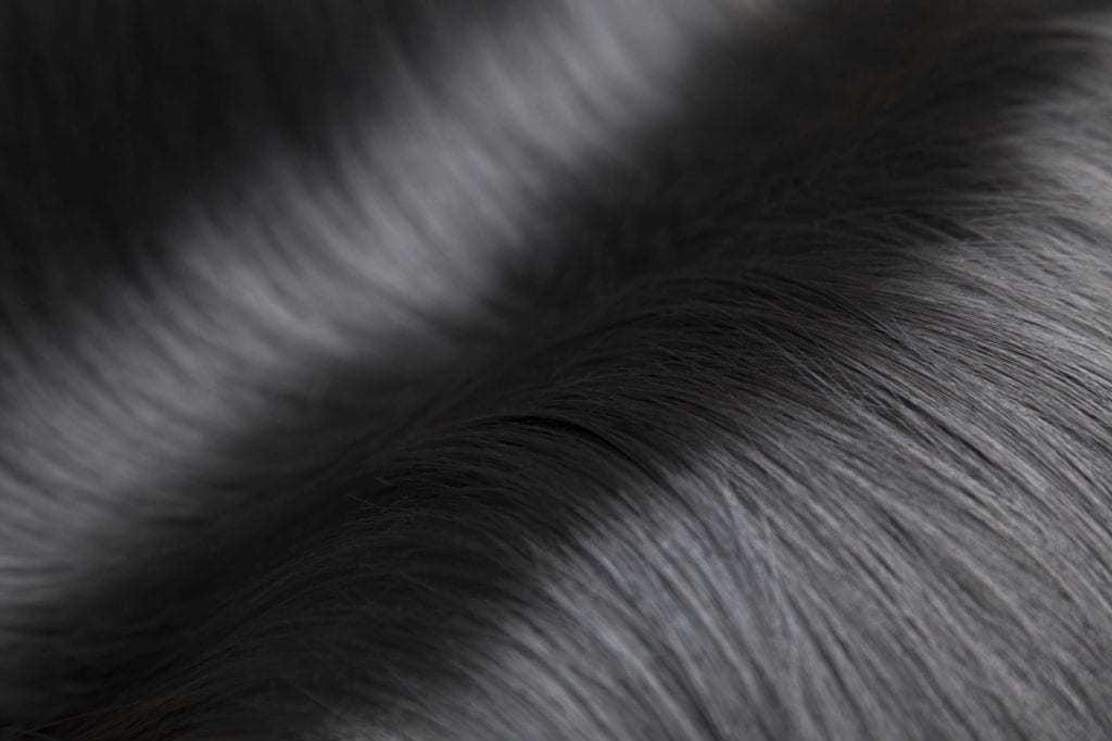 Foto rambut hitam