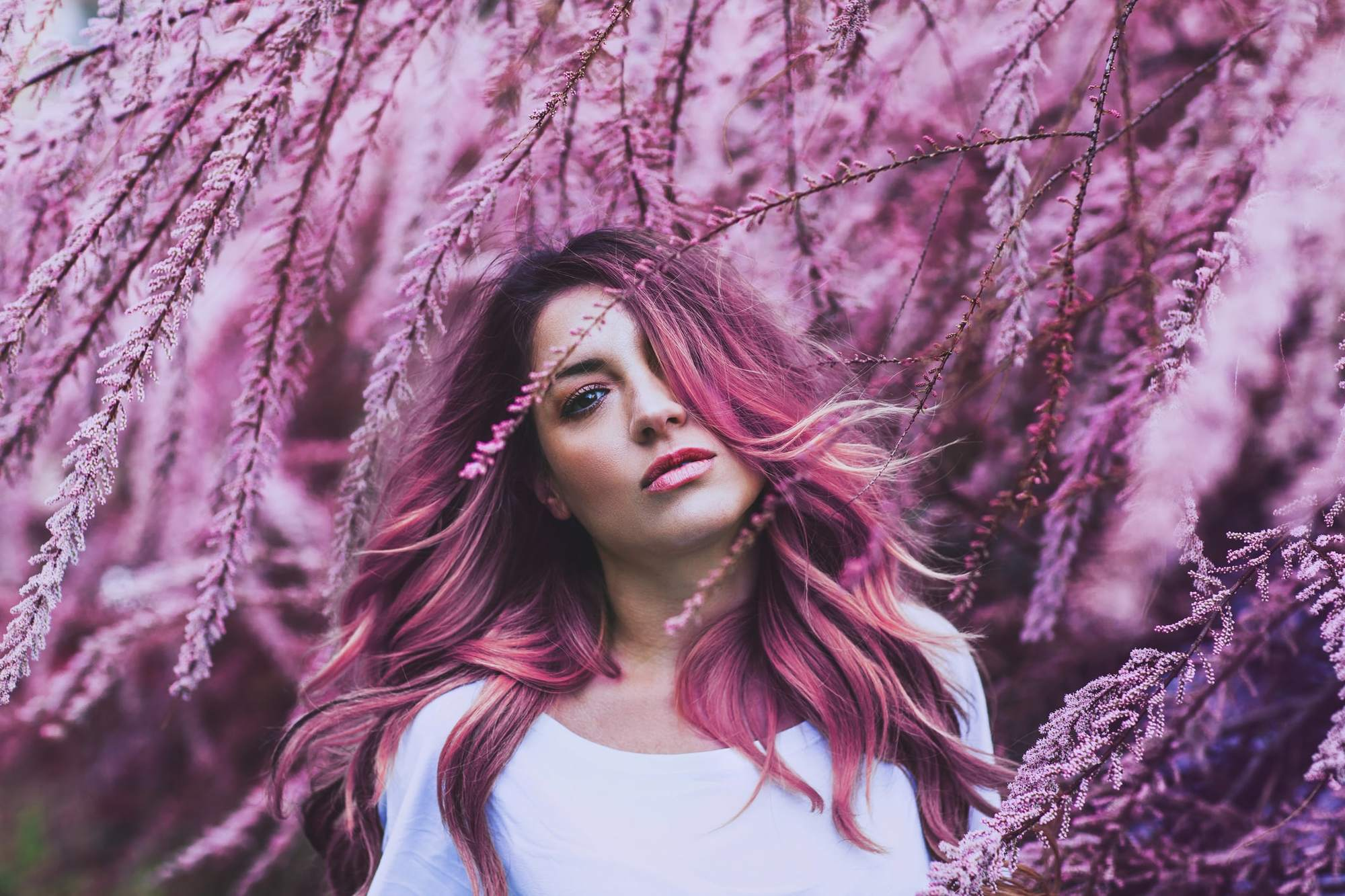 pink hair pink ombre
