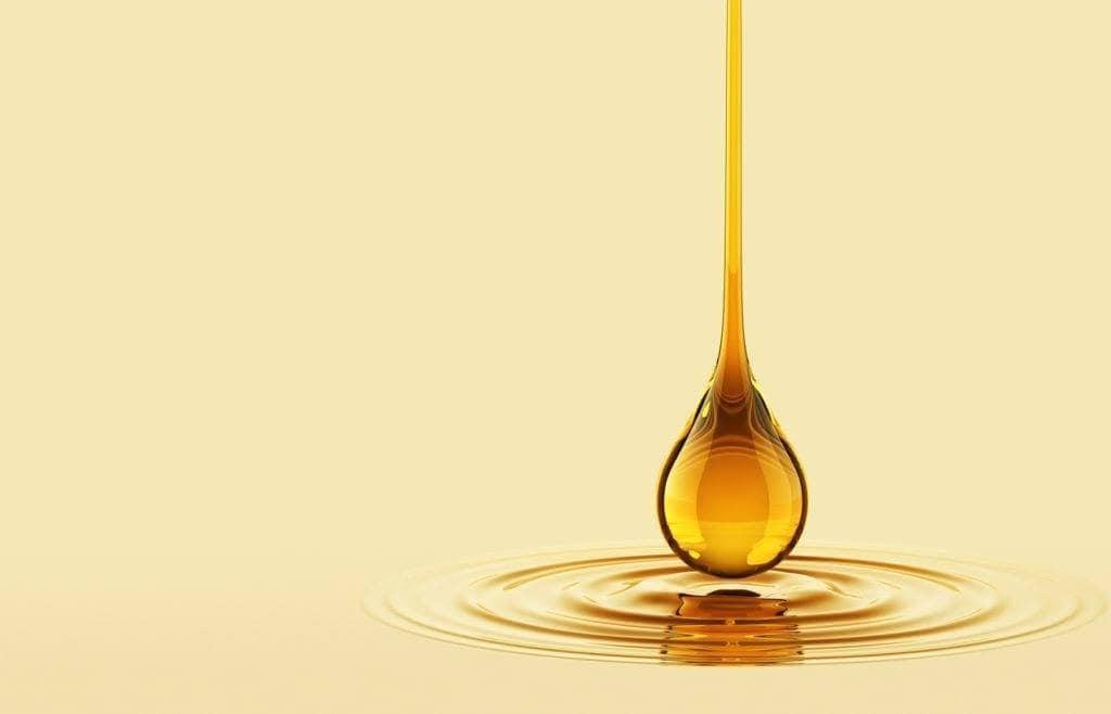 world bee day: honey