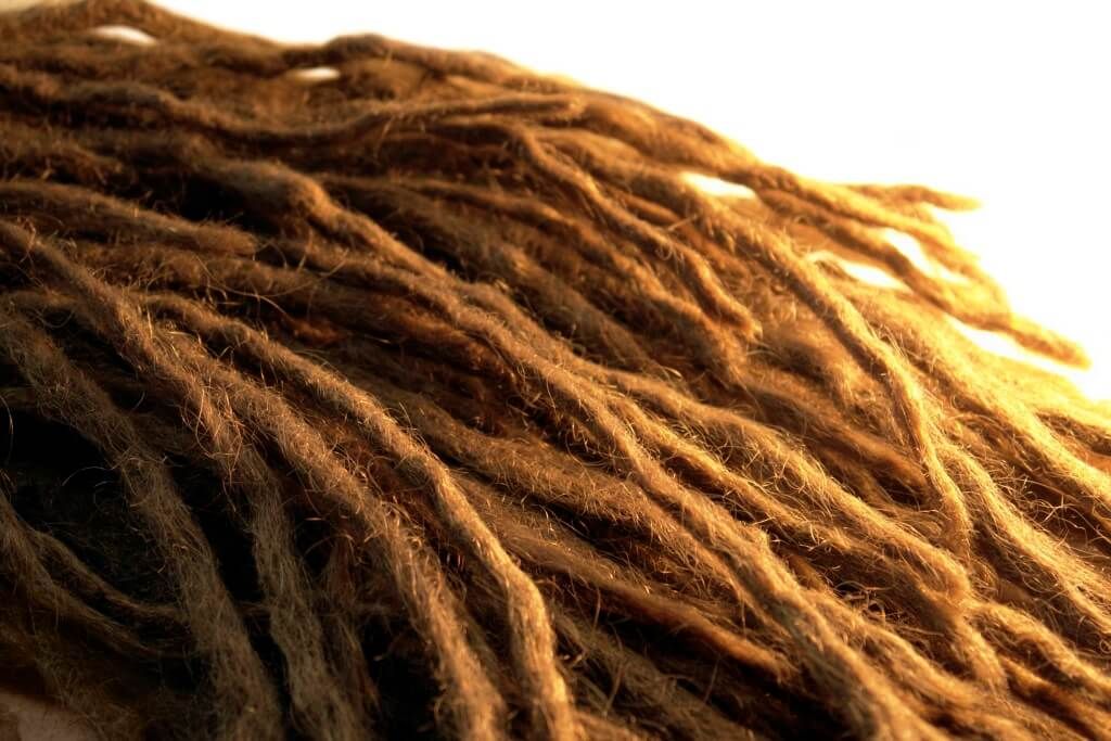 Close-up of dreadlocks