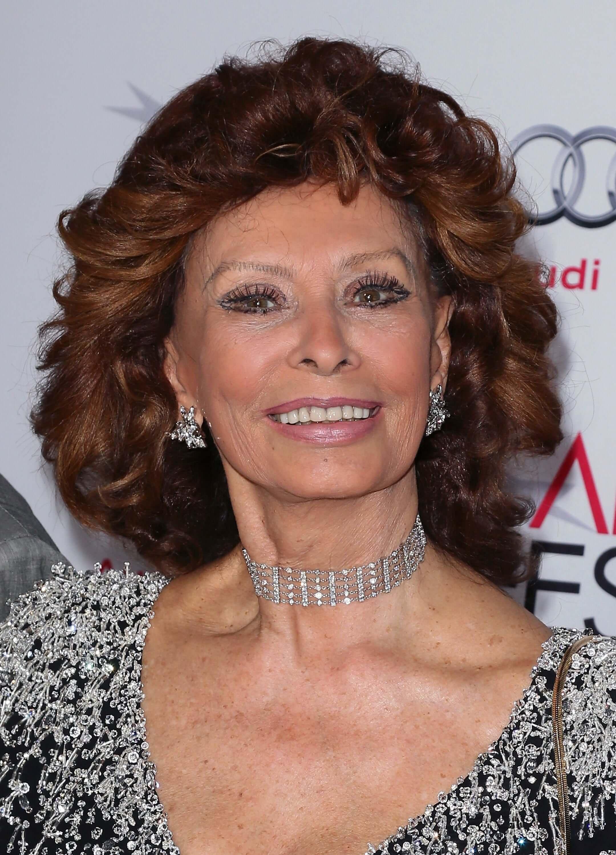 brunette hair Sophia Loren short and curly