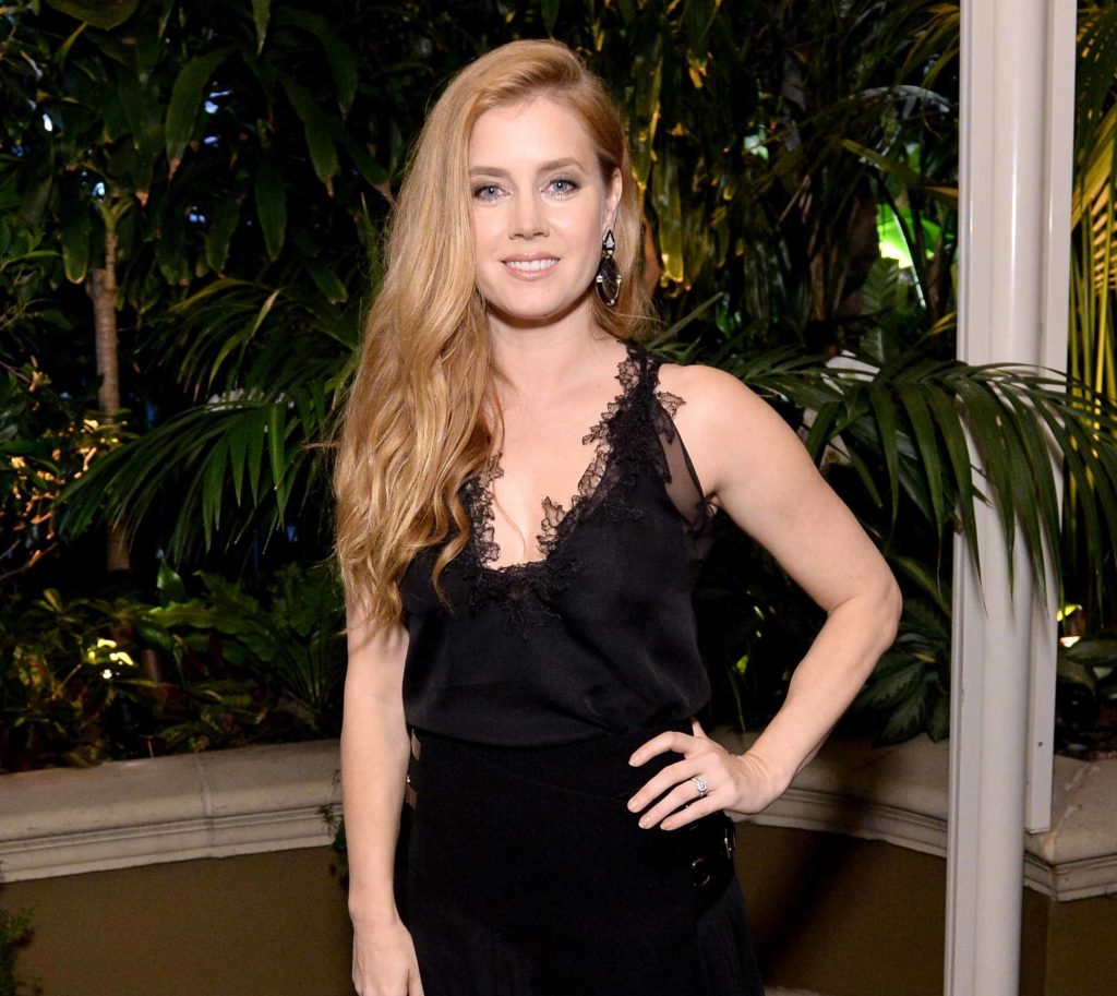 Natural blonde: All Things Hair - IMAGE - celebrity Amy Adams long blonde hair