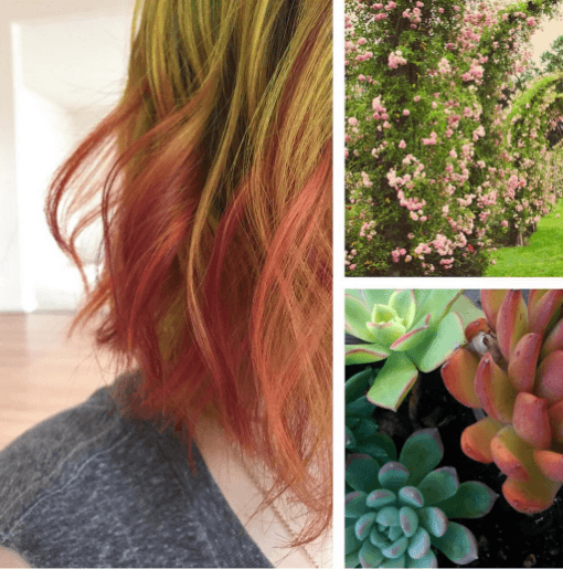 instagram collage of a woman with bob length hair dyed in succulent inspired green and terracotta shades