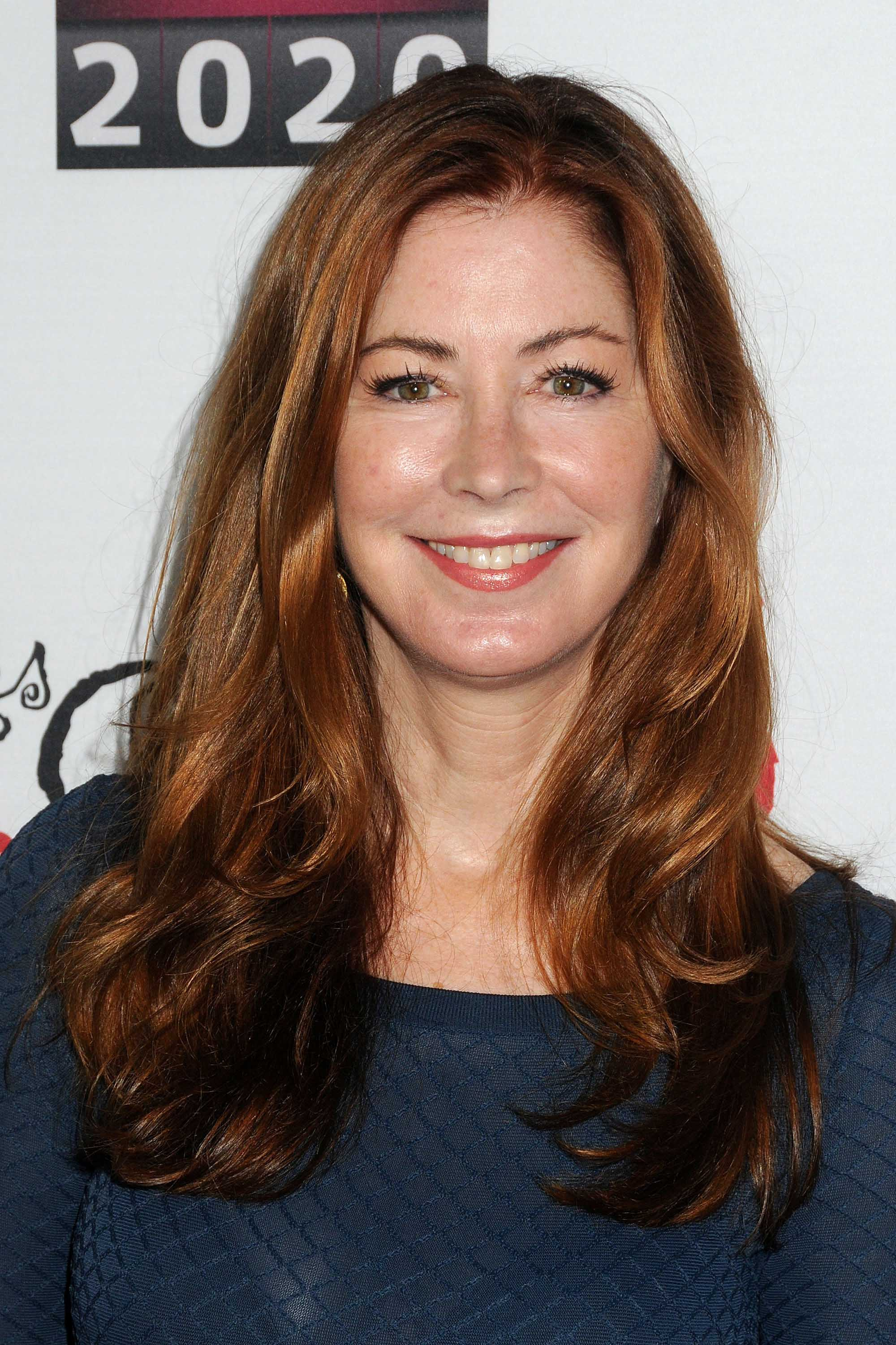 Dana Delany red hair blowdry red carpet hairstyles
