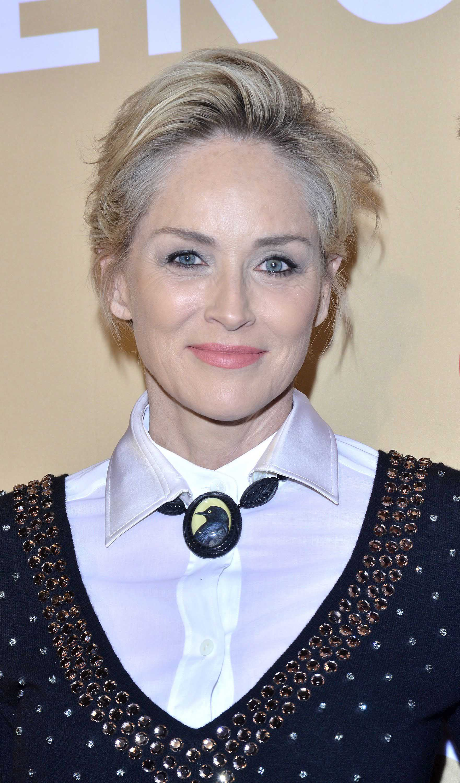 Sharon Stone hair updo red carpet