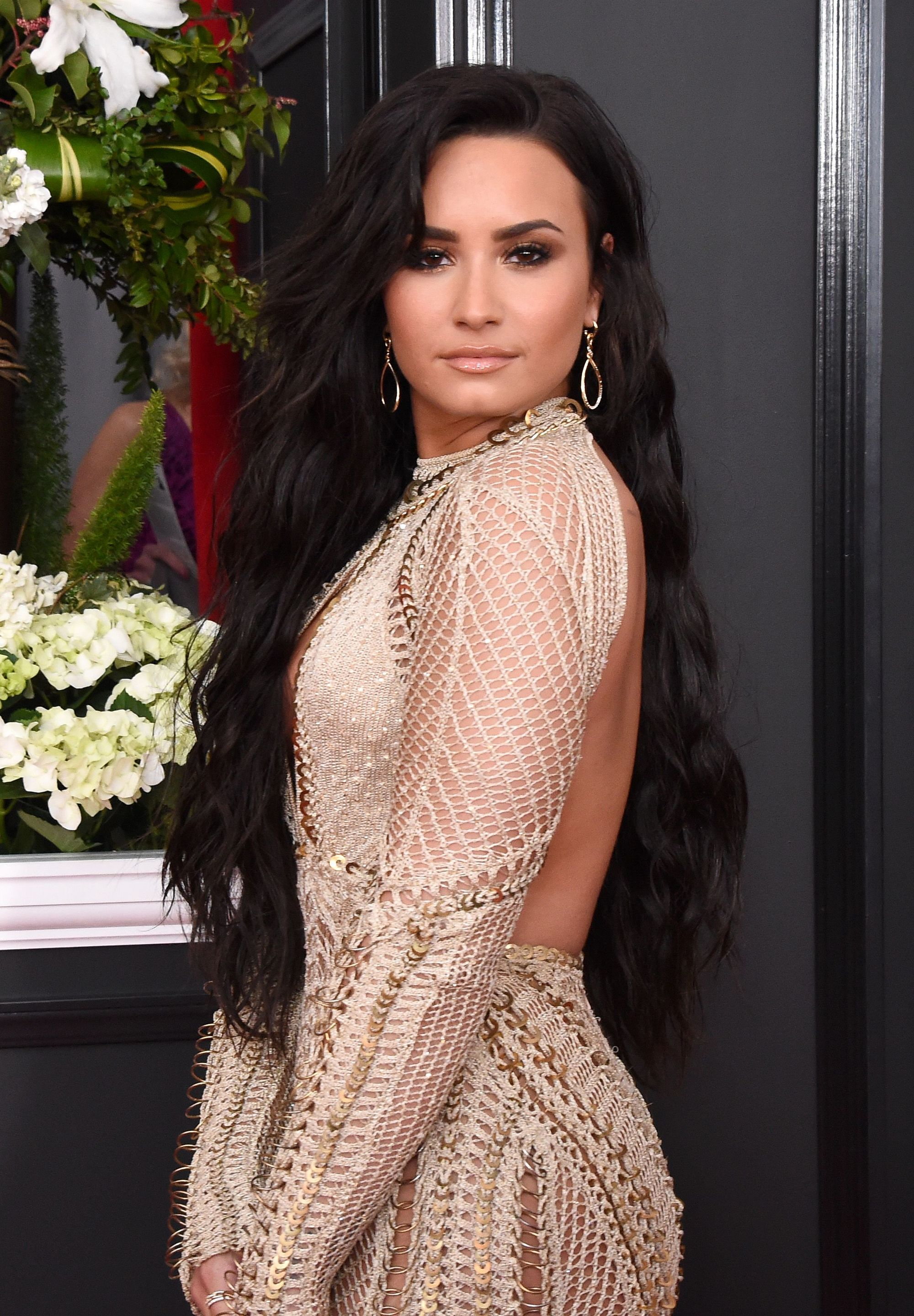 demi lovato on the red carpet in a cut out dress with very long dark hair
