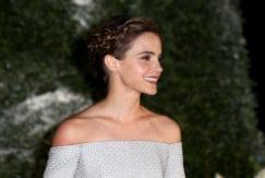 Emma Watson brunette hair plaited updo