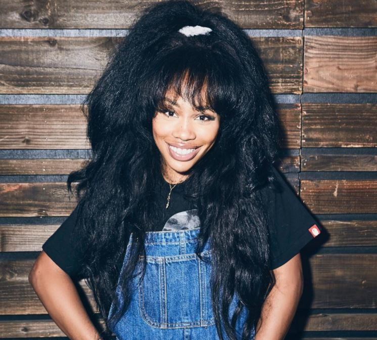 One To Watch Why Sza Needs To Be On Your Hair Radar