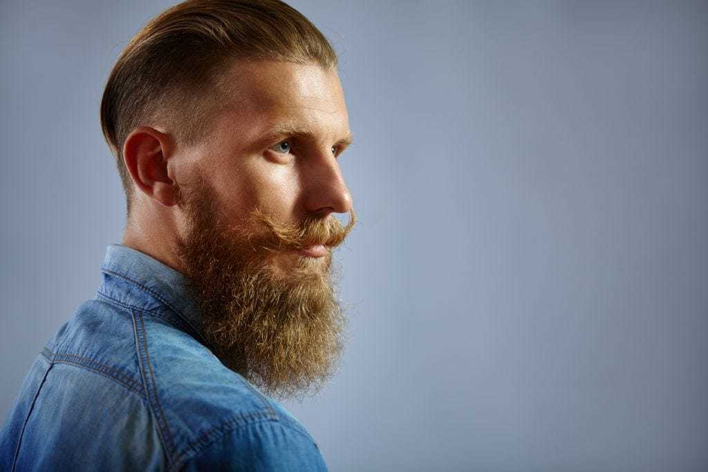 Slicked back undercut: Side profile shot of a red haired man with long slicked back top layers and an undercut with a long beard, wearing a blue denim shirt