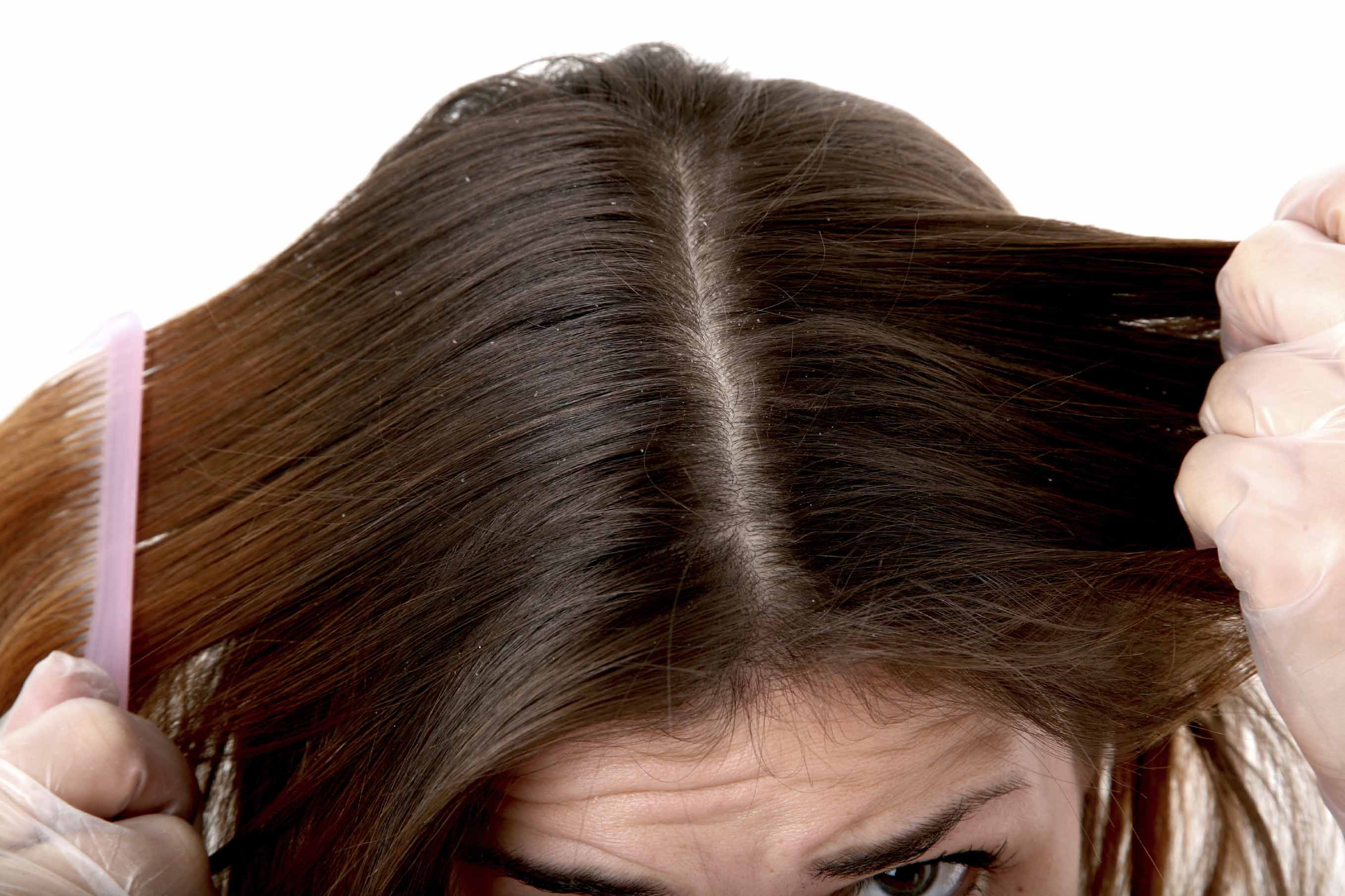 close up of hair parting on brown hair