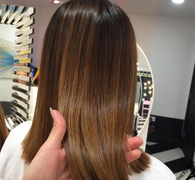 Cocoa cinnamon hair colour: Back shot of a woman with straight, shoulder-length hair with dark brown to cinnamon ombre.