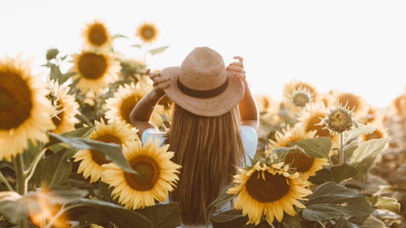 World Earth Day: Woman in a sunflower field with long hair with sunhat on
